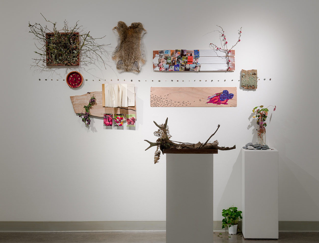 Photograph of work by Maggie Brown installed in the Vachon Gallery
