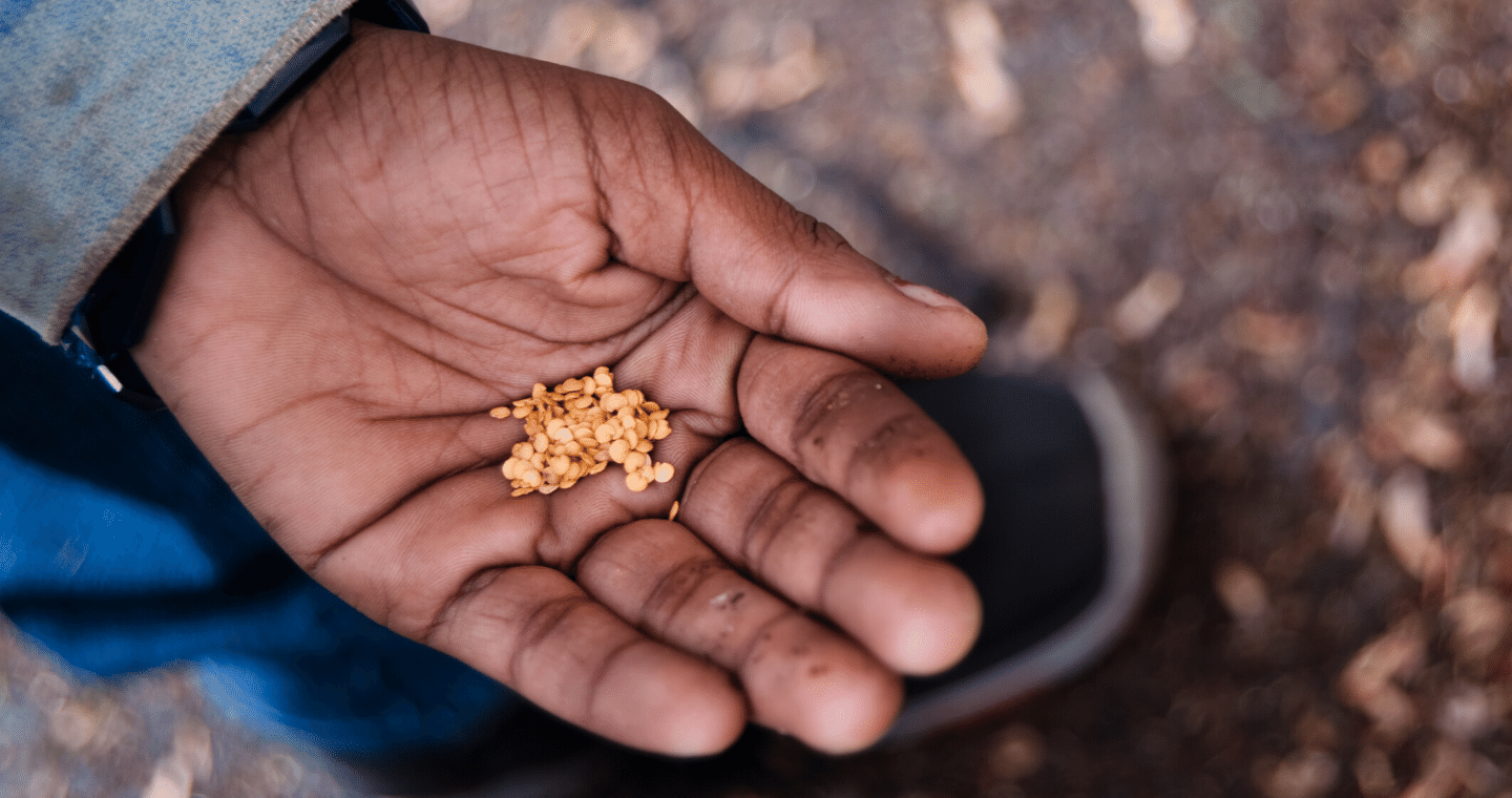 a human silhouette looks out towards a purple and pink sky at sunset