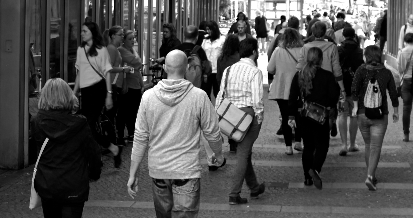 Close up of yellow flower buds growing on a branch