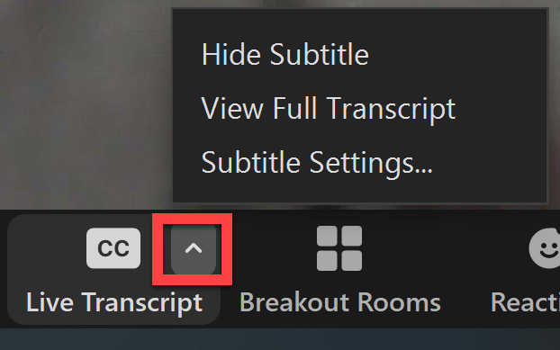 Screenshot showing options after enabling live transcript in Zoom