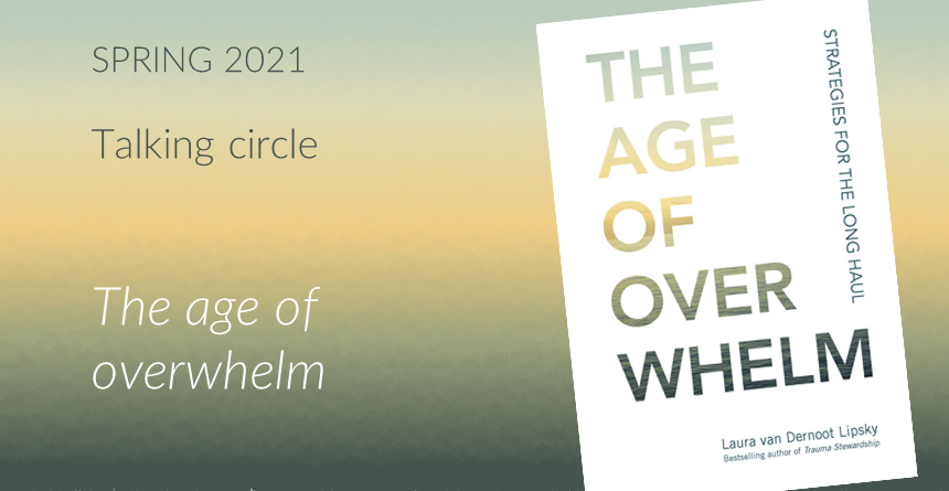 Image of book cover for The Age of Overwhelm by Laura van Dernoot Lipsky