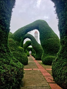 Photo of fanciful hedges by Monica McKeown; Shapes of the Imagination (San José, Costa Rica);