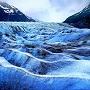 Photo of Spencer Glacier 4 in Alaska by Crystal (Sujung) Choi