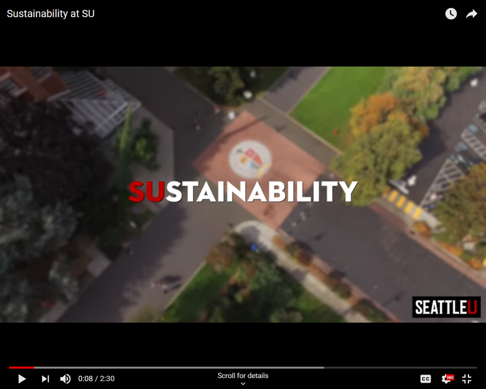Screen shot from SU Sustainability video