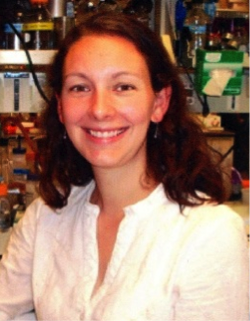 Photo of Carolyn Stenbak, Ph.D.