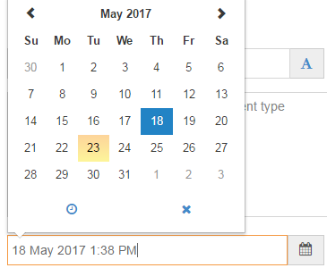 Screenshot of the T4 date picker