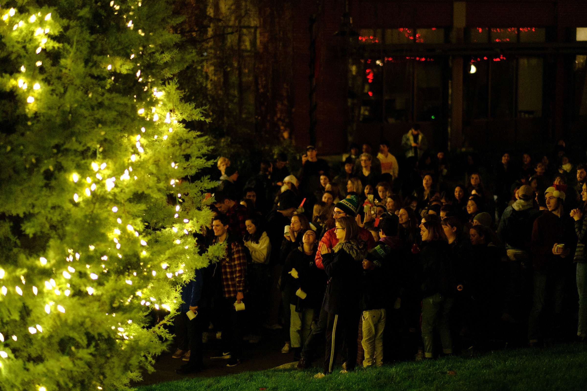 a crowd of students lit by the glow of the campus Christmas Tree