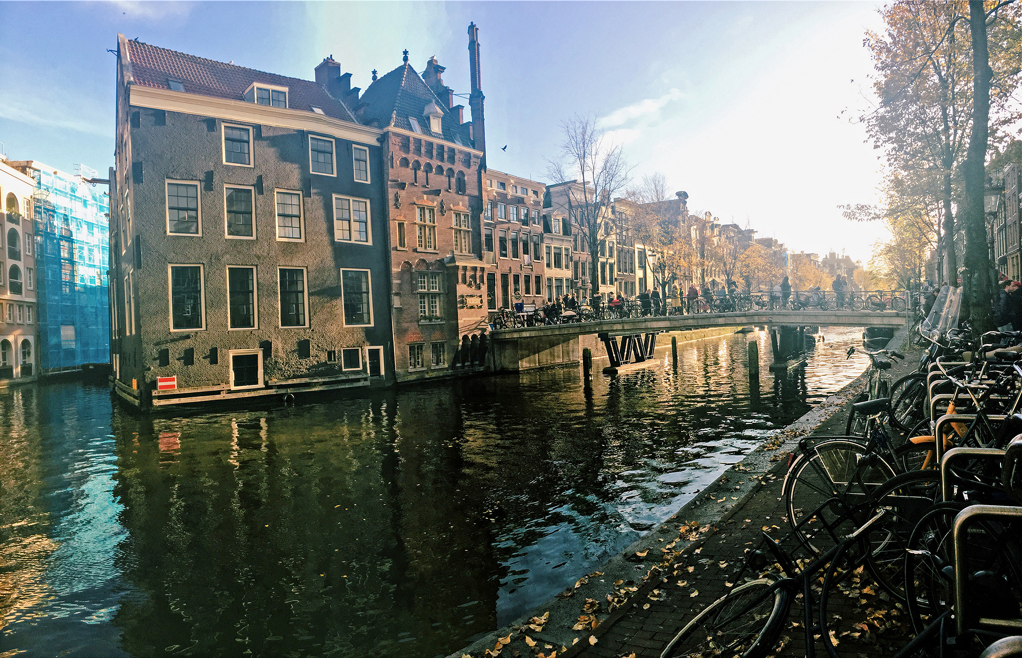 a canal lined with bicycles in autumn