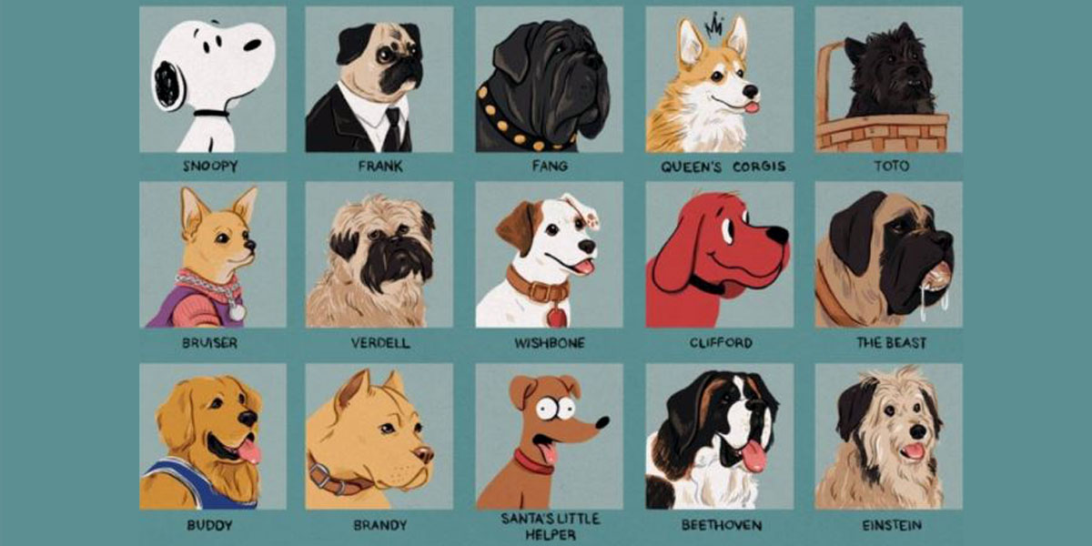 Illustration of different dogs with their names underneath each image.